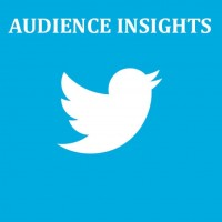 audience-insights-twitter-