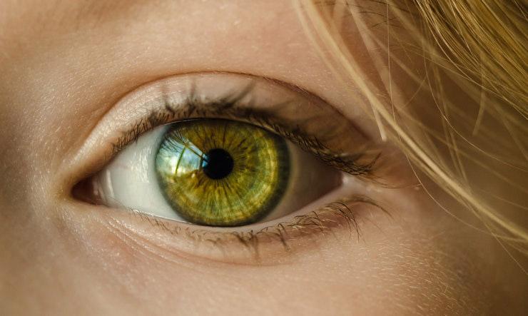 Google quiere enseñar a los sistemas de inteligencia artificial a evitar los errores visuales