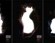 Una campaña juega con la ilusión óptica para promover la adopción de animales