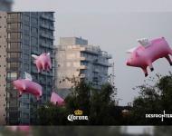 Cerdos voladores decoran el cielo de Ciudad de México