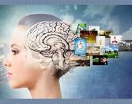 Métodos de investigación para diseñar y testar una web centrada en el usuario