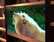 Panasonic deslumbra al mundo con sus nuevas pantallas de TV invisibles