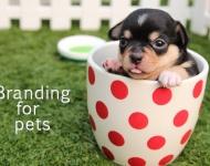 Atención marcas: El 44% de los millennials trata a sus mascotas como si fueran bebés